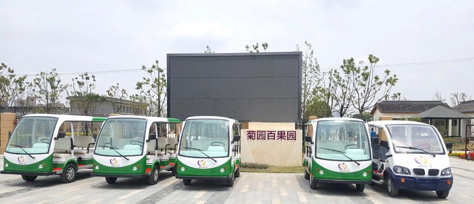上海菊园百果园电动观光车