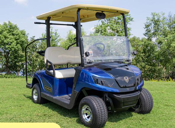 领鹿两座电动高尔夫球车